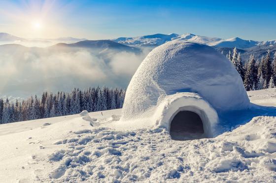 Iglu Übernachtung - im selbst gebauten Iglu inkl. Schneeschuhtour 1 [article_picture_small]