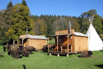 Far West Hütten Übernachtung - für 2 Personen inkl. Frühstück & skandinavisches Bad