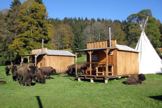 Séjour Far West au Bison Ranch - Au Près d'Orvin - 1 nuitée pour 2 pers avec petit-déjeuner  [article_picture_small]