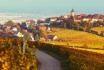 Journée Prestige en supercar-100 km sur la route des vins d'Alsace + 18 km sur circuit 2