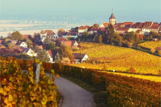 Journée Prestige en supercar - 100 km sur la route des vins d'Alsace + 18 km sur circuit 1 [article_picture_small]