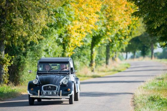1 Übernachtung im luxuriösen Baumhaus - Inkl. privatem Spa, Tagesausflug mit einem Citroën 2CV und Frühstück 6 [article_picture_small]