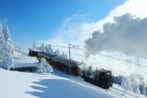 Winter-Dampffahrt auf die Rigi - Nostalgische Bergbahnfahrt ab Vitznau  (für Personen mit Halbtax-Abo)