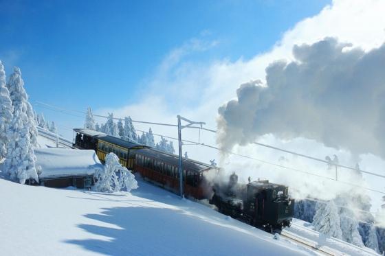Winter-Dampffahrt auf die Rigi - Nostalgische Bergbahnfahrt ab Vitznau  (für Personen mit Halbtax-Abo)  [article_picture_small]