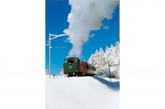 Winter-Dampffahrt auf die Rigi - Nostalgische Bergbahnfahrt ab Vitznau  (für Personen mit Halbtax-Abo) 1 [article_picture_small]