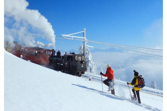 Winter-Dampffahrt auf die Rigi - Nostalgische Bergbahnfahrt ab Vitznau  (für Personen mit Halbtax-Abo) 2 [article_picture_small]