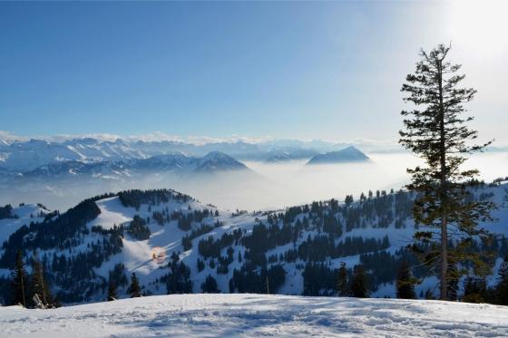 Winter-Dampffahrt auf die Rigi - Nostalgische Bergbahnfahrt ab Vitznau  (für Personen mit Halbtax-Abo) 4 [article_picture_small]