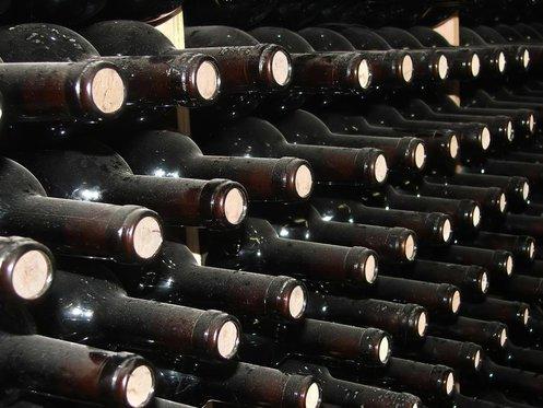 Die besten Weine der Welt - von der Rebe bis zum Wein, in Zürich 3 [article_picture_small]