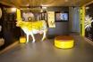 Besuch in der Käserei-inkl. Menu Fondue für 2 Erwachsene + 2 Kinder 3