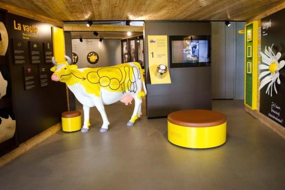 Besuch in der Käserei - inkl. Menu Fondue für 2 Erwachsene + 2 Kinder 2 [article_picture_small]