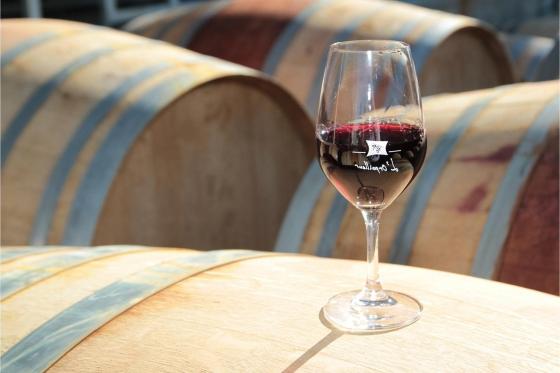 Dégustation de vin pour deux - Cave L'Orpailleur (VS) avec apéritif et 2 bouteilles offertes  [article_picture_small]