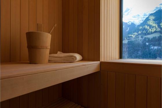 Séjour Wellness en montagne - Hôtel 4* National Resort & Spa à Champéry (VS) 6 [article_picture_small]