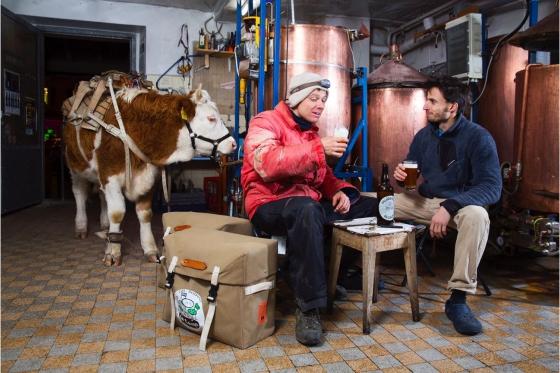 Dégustation de bières & visite - Brasserie de la Concorde (VD) - Avec apéritif et pack cadeau - Pour 2 personnes 1 [article_picture_small]
