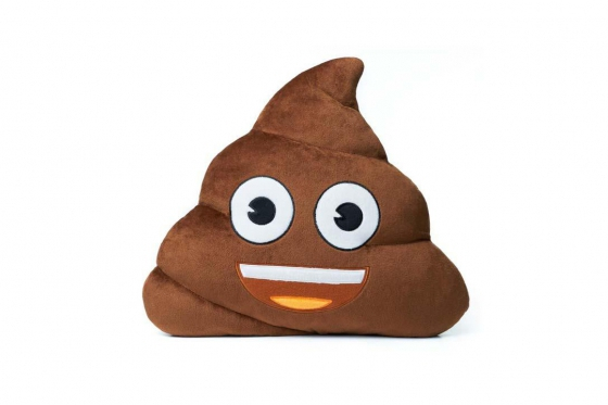 Coussin - Poop