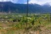 Dégustation de vin pour deux-Cave de l'Orlaya (VS) avec visite, apéro et bouteille offerte 3
