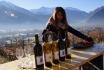 Dégustation de vin pour deux-Cave de l'Orlaya (VS) avec visite, apéro et bouteille offerte 4