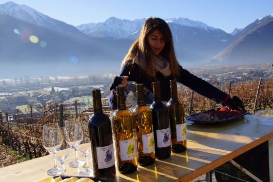 Dégustation de vin pour deux - Cave de l'Orlaya (VS) avec visite, apéro et bouteille offerte 3 [article_picture_small]