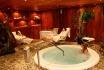 45-minütige Massage & Tee-für 2 Personen - Spa Hotel 4*Macchi in Châtel 11