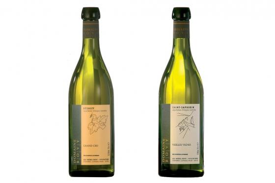 Dégustation de vin pour deux - Domaine Bovy (VD) avec visite, apéro et bouteilles offertes 2 [article_picture_small]