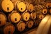 Dégustation de vin pour deux-Cave Philippe Bovet (VD) avec apéro, visite et 2 bouteilles offertes 3
