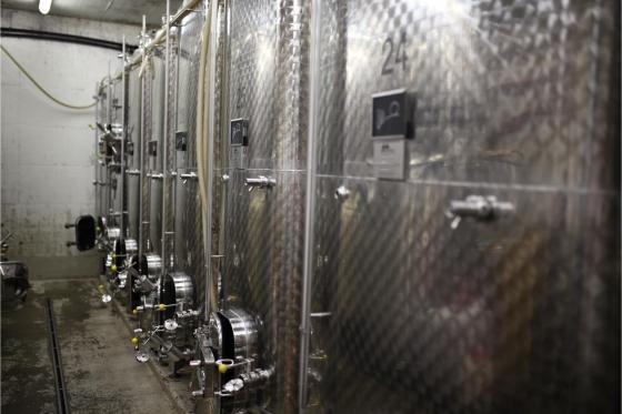 Dégustation de vin pour deux - Cave Philippe Bovet (VD) avec apéro, visite et 2 bouteilles offertes 4 [article_picture_small]