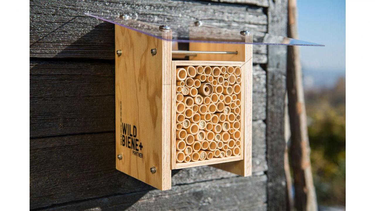 maison pour abeilles sauvage. Black Bedroom Furniture Sets. Home Design Ideas