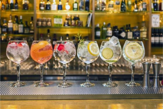 Gin Seminar - Gin mit allen Sinnen erleben in Zürich 1 [article_picture_small]