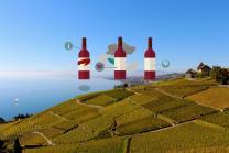 Wein Lieferung nach Hause - 3 Flaschen exzellenten Wein geniessen