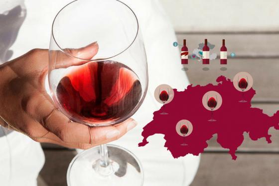Wein Lieferung nach Hause - 3 Flaschen exzellenten Wein geniessen 1 [article_picture_small]