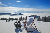 Kulinarische Schneeschuhtour - 3 Gänge - 3 Gastgeber / für 1 Person
