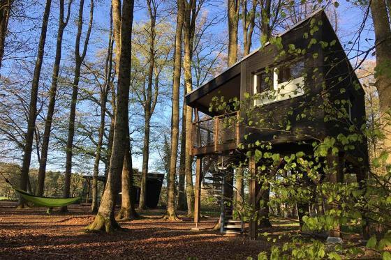 Nuitée dans une cabane - Séjour insolite pour 2 personnes, avec petit-déjeuner  [article_picture_small]