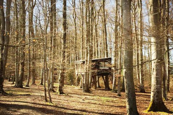 Nuitée dans une cabane - Séjour insolite pour 2 personnes, avec petit-déjeuner 16 [article_picture_small]
