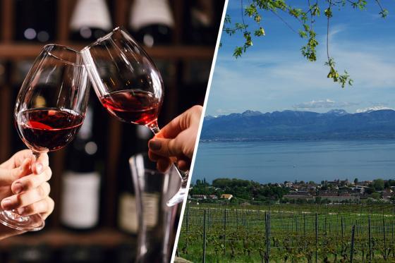 Dégustation de vin pour deux - Domaine de Mont sur Rolle ou de Tartegnin (VD) 1 [article_picture_small]