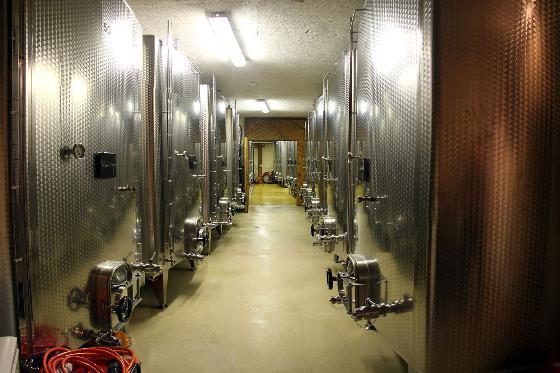 Dégustation de vin pour deux - Domaine de Mont sur Rolle ou de Tartegnin (VD) 4 [article_picture_small]