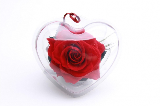 Ewig blühende Rose - in Herzbox