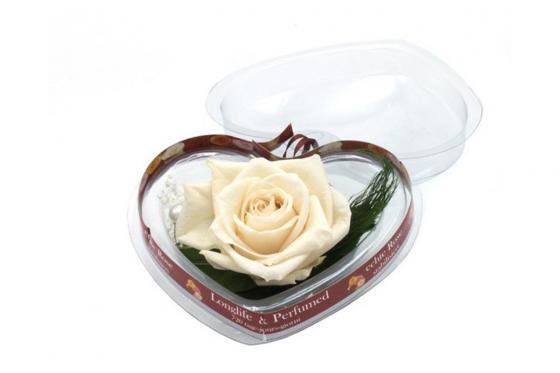 ROSE ÉTERNELLE - boîte en forme de cœur