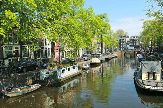 D'Amsterdam à Bâle - Croisière sur le Rhin de 9 jours pour 1 personne en pension complète 8 [article_picture_small]