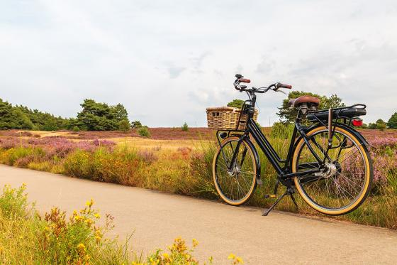 E-Bike Miete - 1 Tag für 1 Person 1 [article_picture_small]