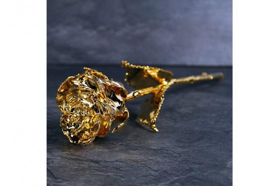 Goldrose - 28cm - in rotem Geschenkkarton 3