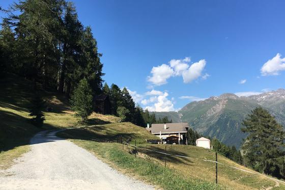 Glamping in den Walliser Bergen - Naturlodge für 2 Personen inkl. Frühstück und traumhaftes Panorama 8 [article_picture_small]