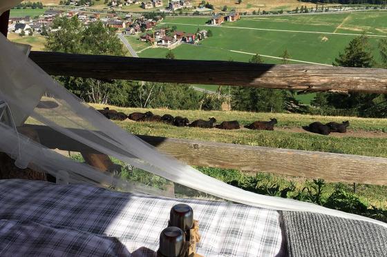 Glamping in den Walliser Bergen - Naturlodge für 2 Personen inkl. Frühstück und traumhaftes Panorama 9 [article_picture_small]