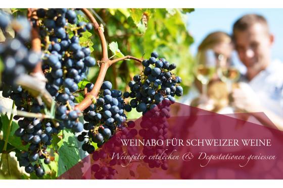 Wein Abo Geschenk - 3 Lieferungen exzellenten Wein geniessen 6 [article_picture_small]