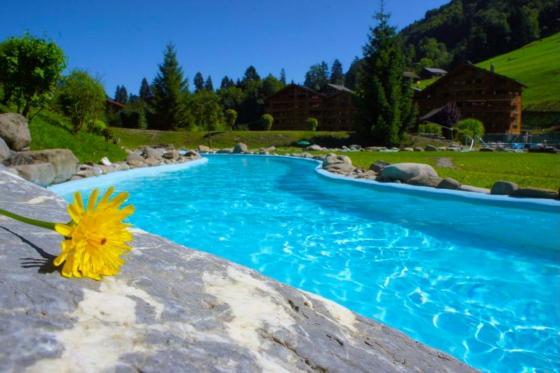 Fondue ou raclette & bains pour 2 - aux bains de Val-d'Illiez 9 [article_picture_small]