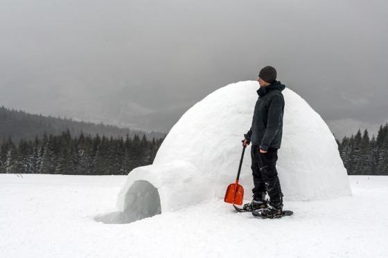 Iglu bauen - und eine Schlittenabfahrt  [article_picture_small]