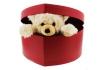 Peluche Teddy - et boîte en forme de cœur 1 [article_picture_small]