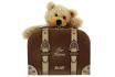 Steiff Teddy  - im Reisekoffer - personalisierbar 1 [article_picture_small]