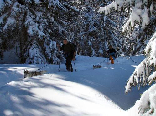 Schneeschuhtour für 4 - mit Huskybegleitung 3 [article_picture_small]