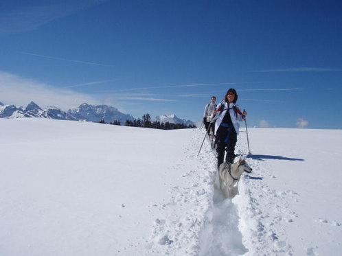 Schneeschuhtour für 4 - mit Huskybegleitung 4 [article_picture_small]