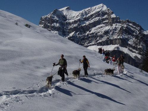 Schneeschuhtour für 4 - mit Huskybegleitung 6 [article_picture_small]