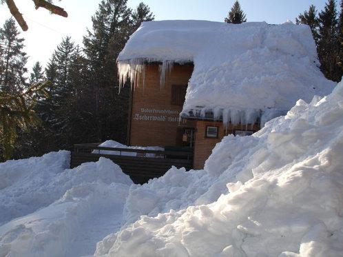 Schneeschuhtour für 4 - mit Huskybegleitung 11 [article_picture_small]